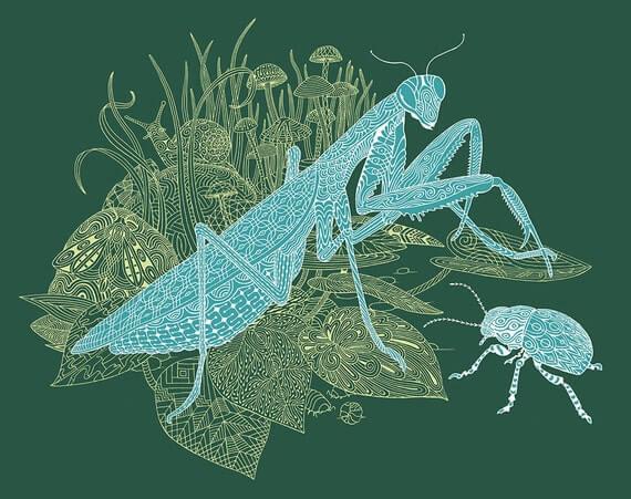 Mantis Medicine